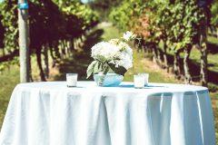 cape-may-nj-winery-wedding-venue6