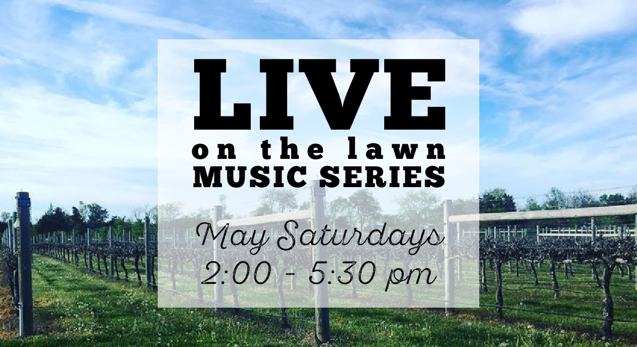 Saturday Music Series | Live on the Lawn with Tom Pernal
